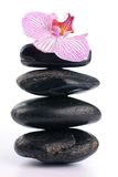 Spa stones with pink flower Stock Image