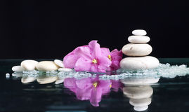 Spa stones and pink flower on black background Stock Images