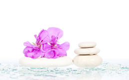 Spa stones and pink flower Stock Photos