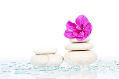 Spa stones and pink flower Royalty Free Stock Image
