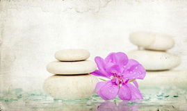 Spa stones and pink flower Royalty Free Stock Photos