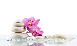 Spa stones and pink flower on white background Stock Photos