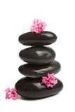 Spa stones and pink flowers isolated Stock Photos