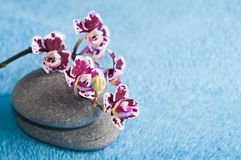 Spa stones and pink orchid Royalty Free Stock Photos