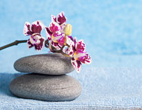 Spa stones and pink orchid Royalty Free Stock Photo