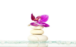 Spa stones and pink orchid Stock Images
