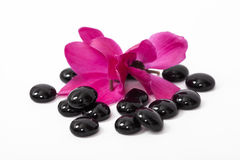 Spa stones and pink petals isolated Royalty Free Stock Photography