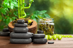 Spa stones and plants. Spa massage stones and plants Royalty Free Stock Photography