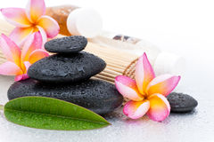 Spa stones and plumeria. Closeup of black spa stones or pebbles and colorful Frangipani or Plumeria blossoms Royalty Free Stock Photo