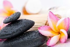 Spa stones and plumeria Stock Photos