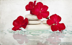 Spa stones and red flower Royalty Free Stock Image