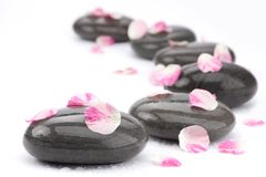 Spa stones with rose petals. On white background royalty free stock photography