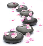 Spa stones with rose petals on white. Royalty Free Stock Photo