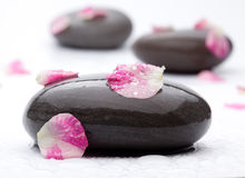 Spa stones with rose petals. Royalty Free Stock Photo