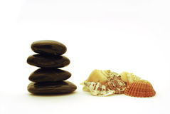 Spa stones and shells Royalty Free Stock Photography
