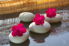 Spa stones and spa flowers. Spa stones and spa pink flowers Stock Photo