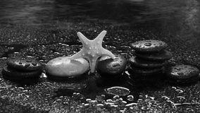 Spa stones and starfish on a dark background with water drops and reflection Royalty Free Stock Photo