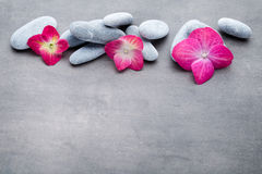 Spa stones treatment scene, zen like concepts. Royalty Free Stock Image