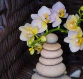 Spa stones treatment scene, zen like concepts royalty free stock image