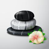 Spa stones with tropical flower Stock Photography