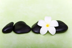 Spa stones and tropical frangipani flower Royalty Free Stock Photography