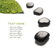 Spa stones with water drops Royalty Free Stock Images