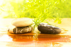 Spa stones on wet surface Royalty Free Stock Photos