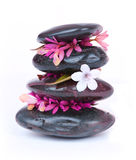 Spa stones with white and hot pink flowers Stock Photos