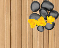 Spa stones and yellow flower on wooden table Royalty Free Stock Image