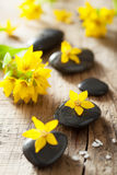 Spa stones and yellow flowers for spa Royalty Free Stock Image