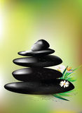 Spa stones. Zen pebbles. Spa and healthcare concept. Black shiny spa and therapy stones on green blurred background Stock Photography
