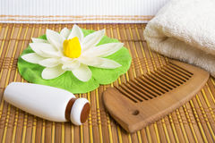 Spa theme. Comb, towel and cream. Royalty Free Stock Images