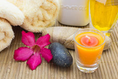Spa theme objects Royalty Free Stock Photos