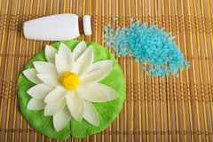 Spa theme. Sea salt, soap and shampoo. Stock Photos