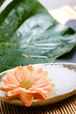 Spa and therapy. Spa aromatherapy stuff on bambus with flowers Royalty Free Stock Photos