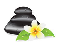Spa therapy. Stones for a spa therapy, leaves and frangipani flower Royalty Free Stock Image
