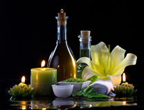 Spa therapy Royalty Free Stock Photography
