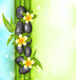 Spa therapy background with bamboo, stones and frangipani flower Stock Photos
