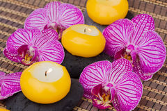 Spa therapy event with burning candles Royalty Free Stock Images