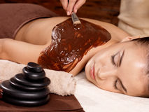 Free Spa Therapy For Young Woman Receiving Mask Stock Photo - 27903730