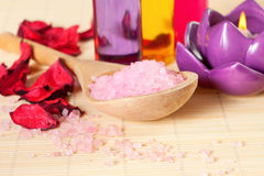 Spa therapy: sea salt, candle, shower gel Royalty Free Stock Photos