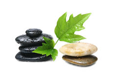 Spa therapy stones. Various spa therapy stones with green leaf and sprinkles of water, over white Royalty Free Stock Photos