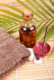 Spa time. Things for use in a spa Royalty Free Stock Photos