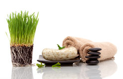 Spa towel, soap and wheatgrass Stock Photos