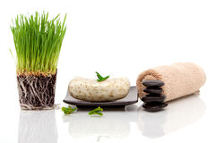 Spa towel, soap and wheatgrass Stock Photography