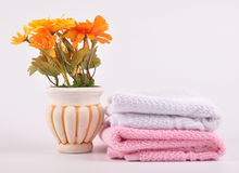 Spa towels. On isolated background with flower pot stock photo