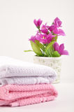 Spa towels. On isolated background with flower pot royalty free stock image