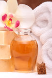 Spa towels and aromatherapy oils Royalty Free Stock Photo