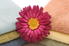 Spa towels and daisy Royalty Free Stock Images