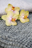 SPA towels in a set with accessories for the bath Stock Photo